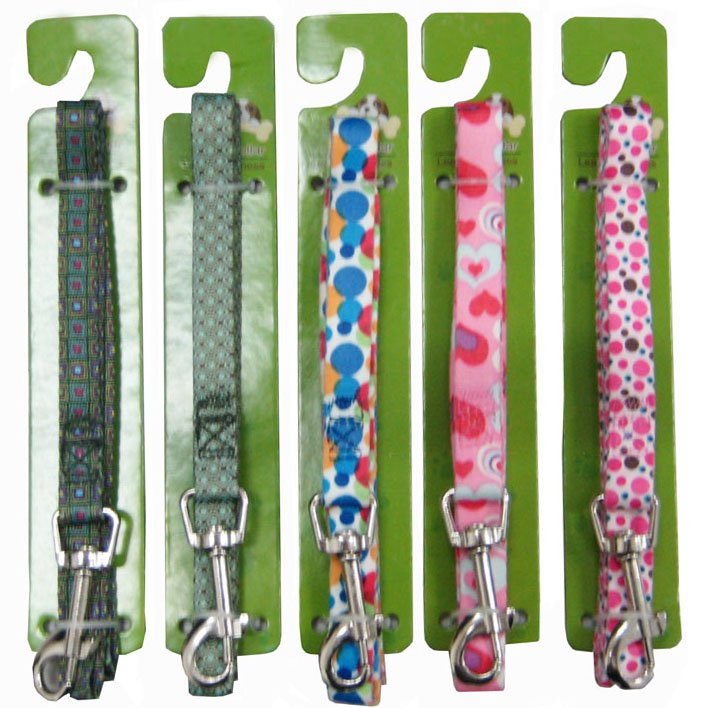 Leash & Collar Lcq0035